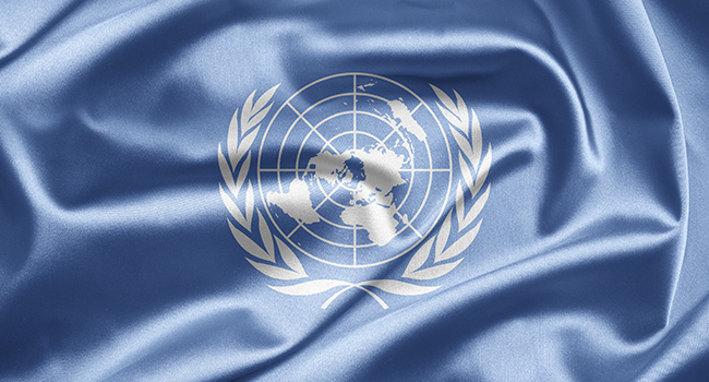 The United Nations, an introduction